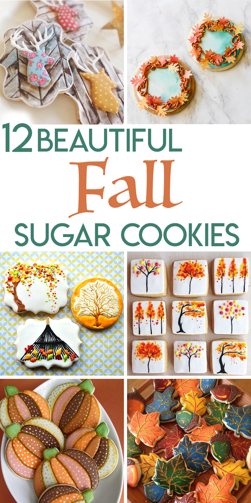 12 beautiful fall sugar cookies