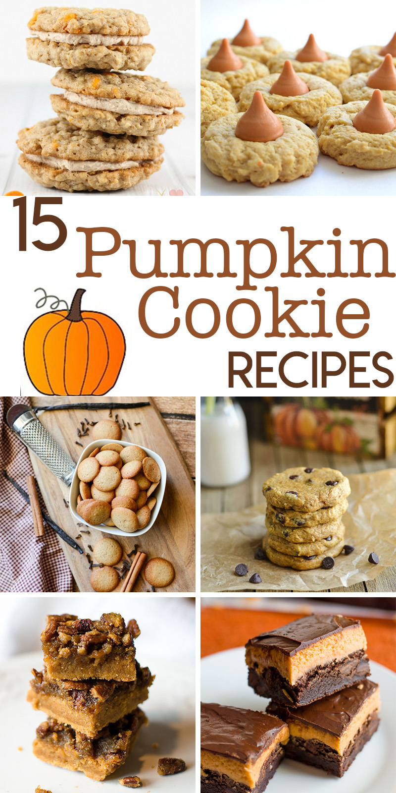 15 Perfectly Delicious Pumpkin Cookie Recipes