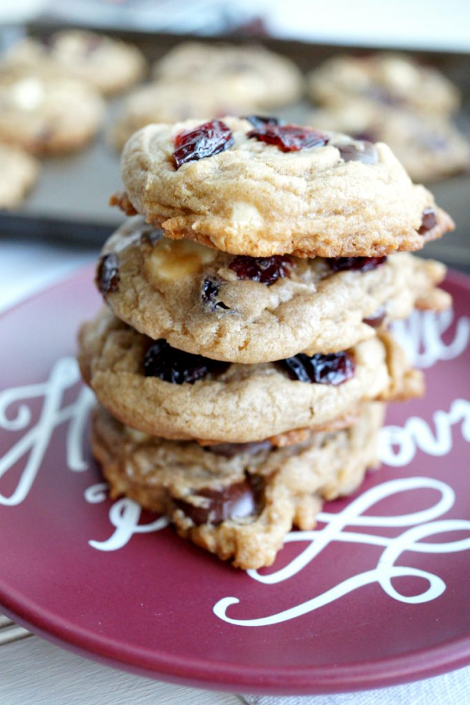 double chocolate chip cranberry cookies recipe