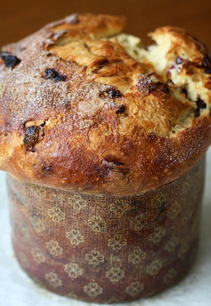 Panettone – The Sweet, Fruit Studded Christmas Bread!