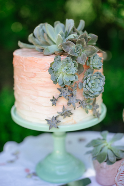 ombre cake decorated with real succulents