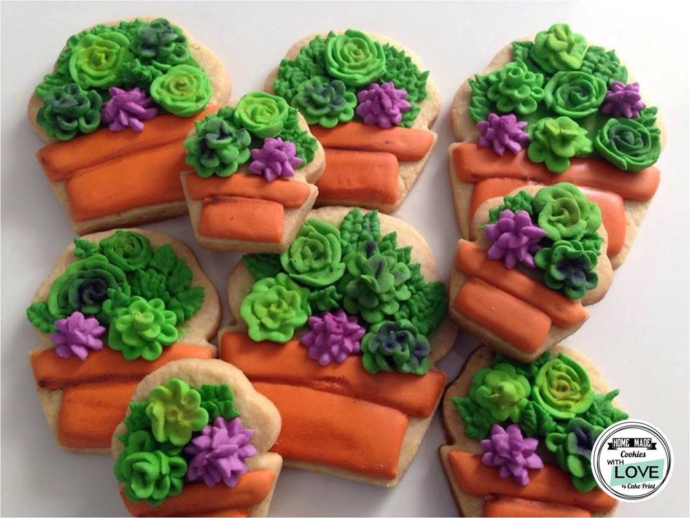 royal icing cookies with succulent decorations