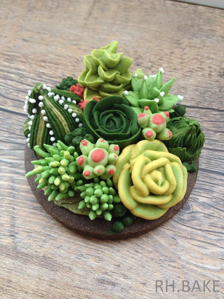 cactus garden cookies with royal icing decorations