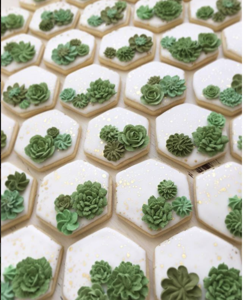 Gorgeous hexagon succulent cookies