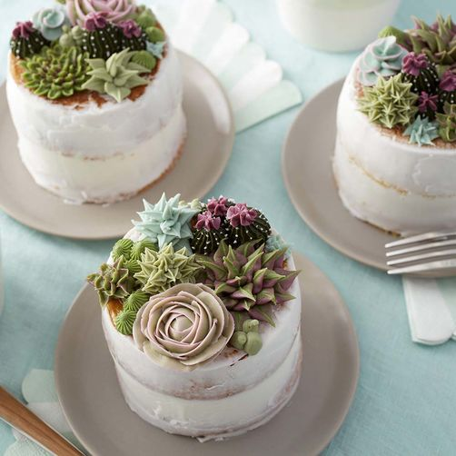 individual buttercream succulents on mini cakes