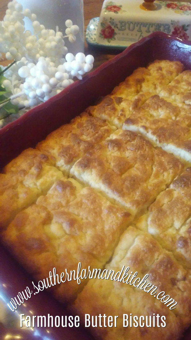 FARMHOUSE BUTTER BISCUITS