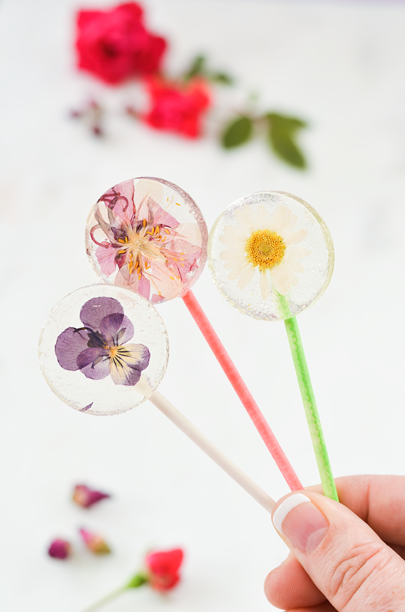 three Clear candy lollipops with edible real flowers embedded in the center of the candy.