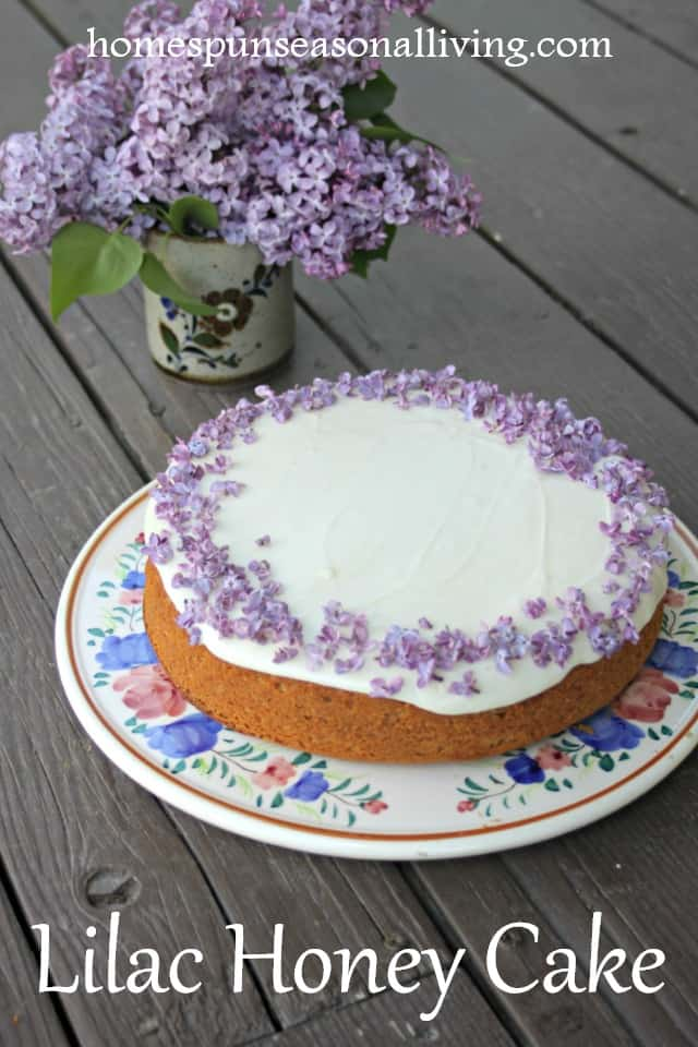 Lilac honey cake decorated with white icing and fresh lilac blossoms on a late on a wooden table.